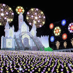Ashikaga Flower Park Castle Illuminations