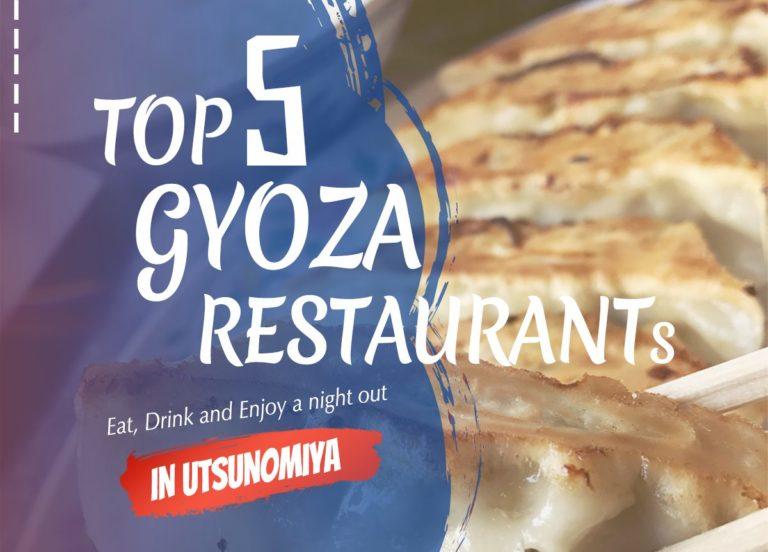 Enjoying top Gyoza restaurants in Utsunomiya   Utsunomiya Night Guide