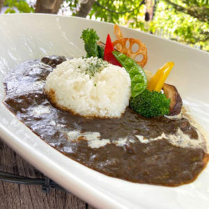Delicious Japanese Black(Dark) Curry with seasonal vegetables