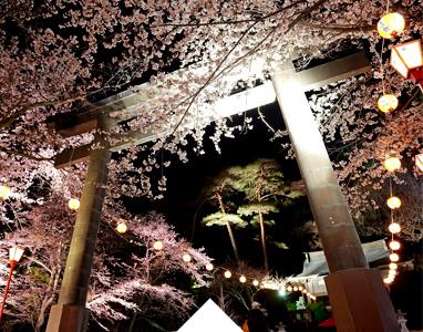 Night Cherry Blossom Festival in Kinugawa Onsen every April