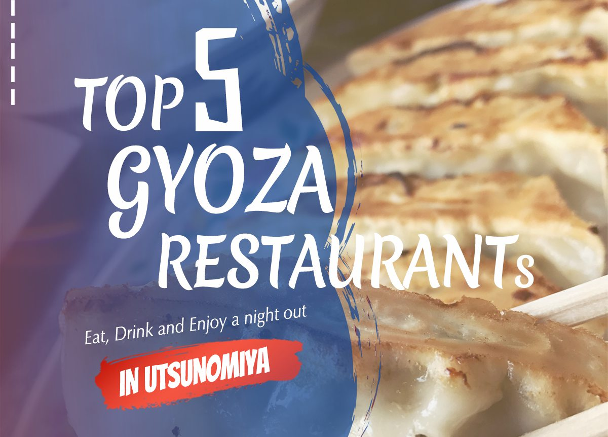 Enjoying top Gyoza restaurants in Utsunomiya | Utsunomiya Night Guide