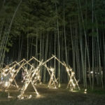 Beautiful bamboo arch lit up at night (Wakayama bamboo Farm)